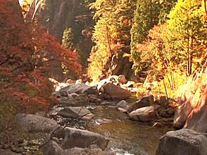紅葉 名所絶景を訪ねて 昇仙峡(山梨)