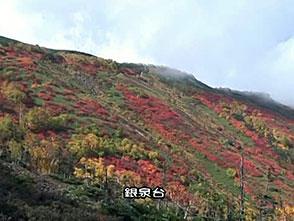 紅葉 名所絶景を訪ねて 層雲峡(北海道)