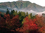 紅葉 名所絶景を訪ねて 高千穂(宮崎)