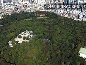 東京空撮 オープニング