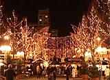 クリスマス街道 ルートヴィヒスブルク(ドイツ)