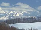 ノースランド・ファンタジー 日本の雪景色