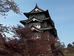 さくら 名所名木を訪ねて 弘前城(青森)