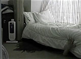 本当の心霊動画「影」4