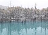美瑛・富良野の四季 水のある風景  - 川・滝・湖沼 -