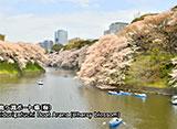 「微速度」で撮る「東京百景」+ FOUR SEASONS