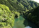 森林浴「新緑の森」スペシャル 鳩ノ巣渓谷遊歩道