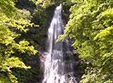 森林浴「新緑の森」スペシャル 天滝渓谷