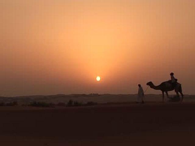 ドバイ 魅惑の近未来アラビアンリゾート デザート・サファリ