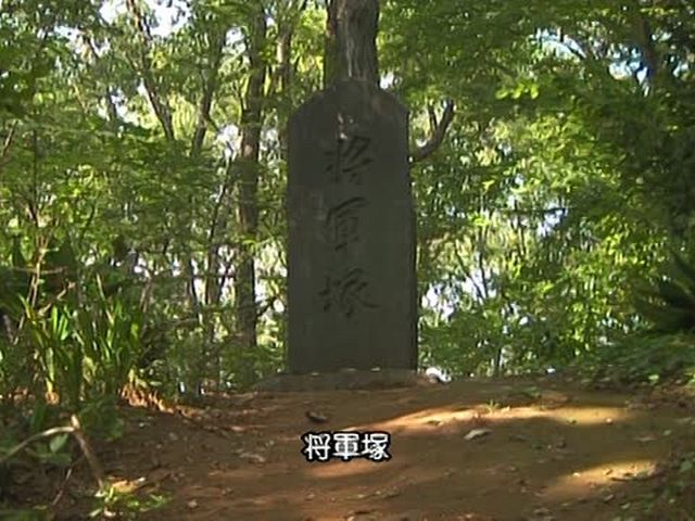 森林浴  トトロの森(東京・埼玉)
