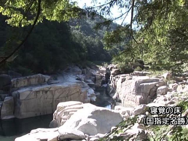 森林浴  赤沢自然休養林(長野)