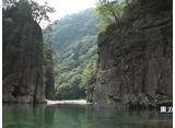 森林浴  三段峡(広島)