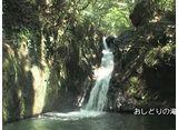 森林浴  十曽渓谷(鹿児島)