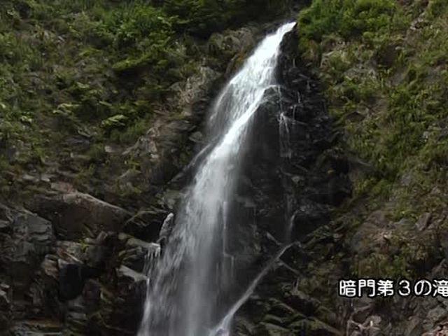 森林浴  白神山地(青森)