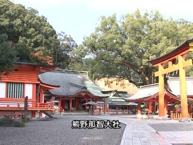 森林浴  熊野古道(和歌山)