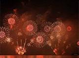 花火 自宅で愉しむ日本屈指の花火大会 オープニング