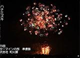 花火 自宅で愉しむ日本屈指の花火大会 土浦全国花火競技大会