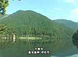 日本 癒しの百景 池 Pond