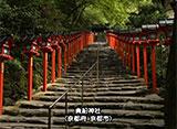 日本 癒しの百景 社 Shrine