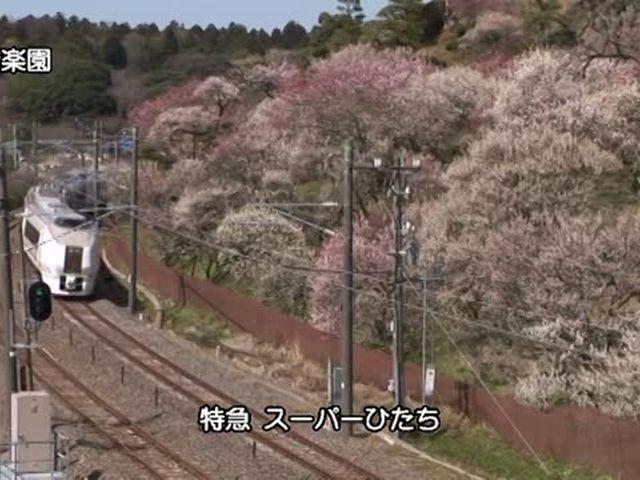 日本の新幹線・特急 東北の特急