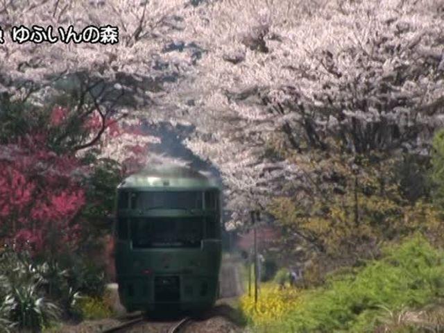 日本のSL・ローカル線・リゾート列車&More  リゾート列車 (西日本)