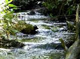 緑水 〜渓流〜