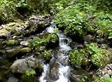 緑水 〜渓流II〜