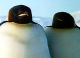 ペンギン・シアター エンペラーペンギン