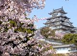 さくら百景 古城の春