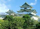 日本の名城を訪ねて 和歌山城