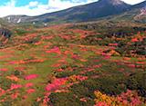 北海道「空撮百景」 道北エリア
