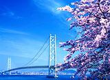 日本の巨大建造物:明石海峡大橋(日本語吹替版)