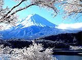 富士山百景 雪化粧