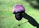 坂田信弘「ゴルフ進化論」 基本編 Part.2 ダウンスウィングからインパクト