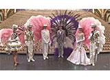 TAKARAZUKA NEWS Pick Up #466「星組宝塚大劇場公演『こうもり』『THE ENTERTAINER!』突撃レポート」〜2016年3月より〜
