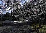 カンテレドーガ「京都・町歩き 洛東 前編」