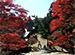 関西テレビ おんでま「京都・町歩き 洛西 後編」
