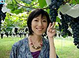 TBSオンデマンド「木村郁美のほろ酔い紀行〜甲州・ワイン編〜」