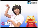 TBSオンデマンド「CatChat えいごKIDS! #85」