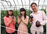 関西テレビ おんでま「横山由依(AKB48)がはんなり巡る 京都 いろどり日記 #1」