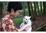猫侍 #7