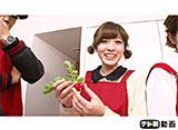 テレ朝動画「サイサイてれび!(おちゃの娘サイサイ) #11」