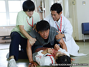 カンテレドーガ「チーム・バチスタ4 螺鈿迷宮 #6」