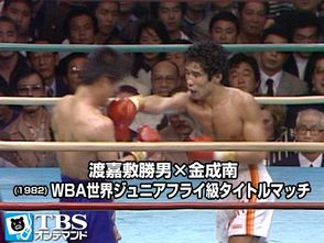 TBSオンデマンド「渡嘉敷勝男×金成南(1982) WBA世界ジュニアフライ級タイトルマッチ」