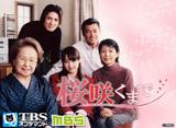 TBSオンデマンド「桜咲くまで」#1〜#25 30daysパック