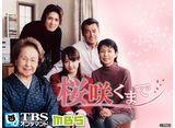 TBSオンデマンド「桜咲くまで」30daysパック