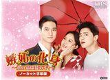 TBSオンデマンド「韓国ドラマ『嫉妬の化身〜恋の嵐は接近中!〜』ノーカット字幕版」 30daysパック
