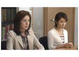離婚弁護士�〜ハンサムウーマン〜
