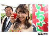 テレ朝動画「ももクロChan〜Momoiro Clover Z Channel〜 #431(2019/3/12放送DX)」
