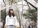 カンテレドーガ「横山由依(AKB48)がはんなり巡る 京都 いろどり日記 #10」
